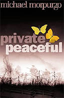 Private Peacefull cover, fair use